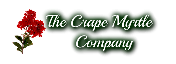 The Crepe Myrtle Company